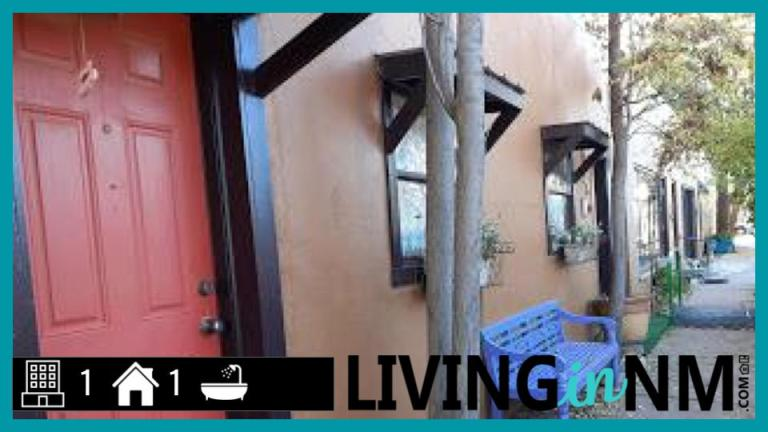 Living in NM youtube thumbnail (5)